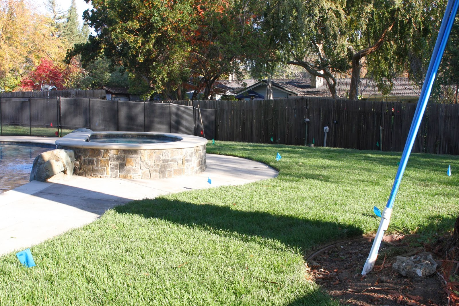 outdoor update backyard sod more sprinklers simply organized