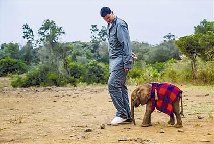 Ming com um elefante bebé numa reserva natural do Quénia, onde gravou um documentário