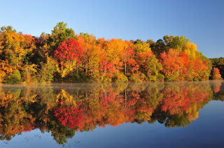 Your Tri Cities Real Estate Professional Fall And Winter