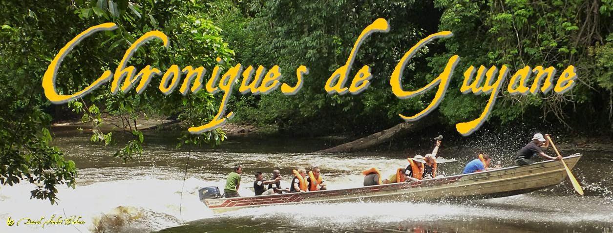Chroniques de Guyane