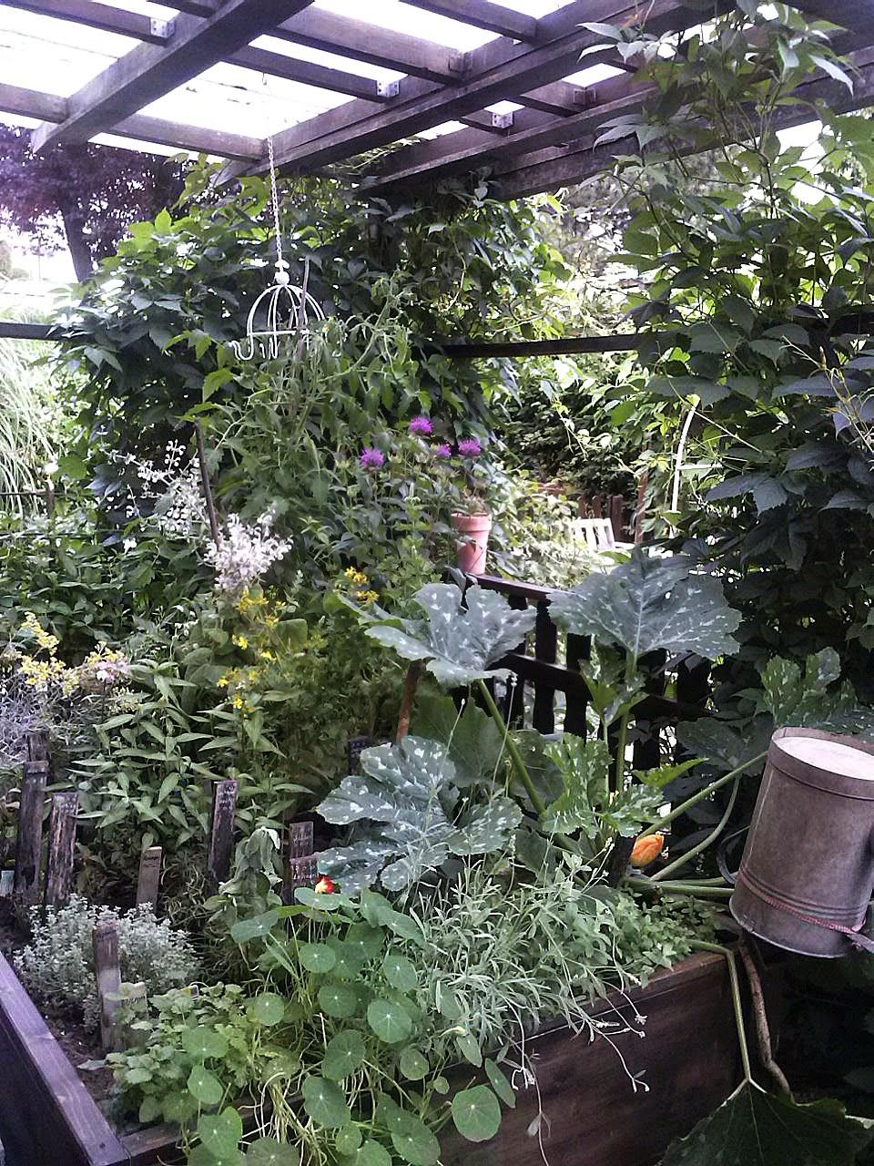 Leben Natur Shabby Chic Mein Krautergarten Im Hochbeet Ernte