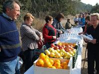 Aigua, entrepà i fruita al Coll de la Creu d'en Querol