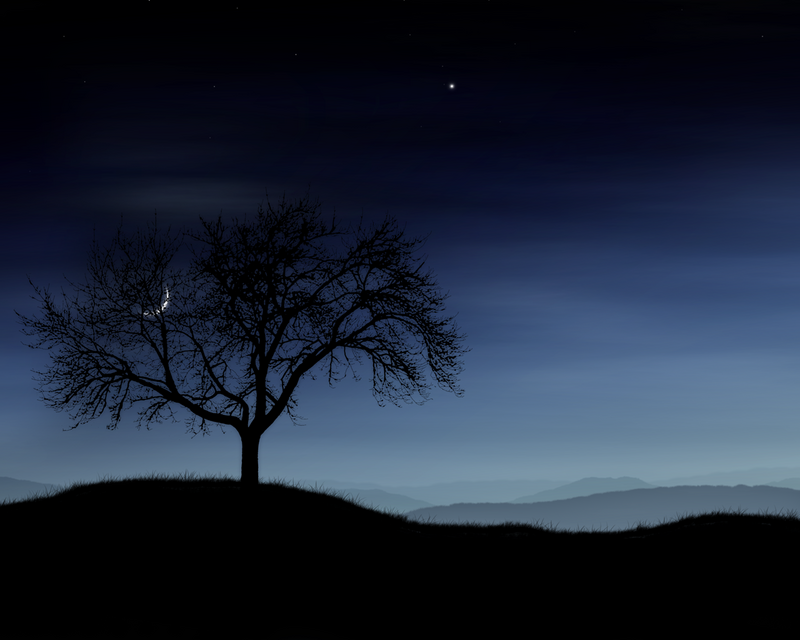 Night Wallpaper Photo