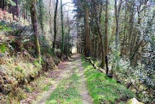 Ruta de los molinos, un aspecto del sendero