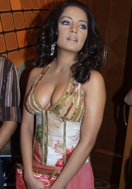 Celina Jaitley Big Cleavage Photos