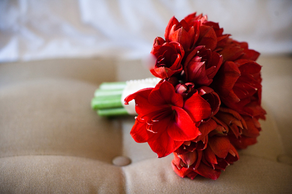 Beyond the aisle inspiration for a garnet red amaryllis for Bouquet amaryllis