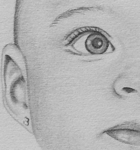 Los Dibujos de Roseta noviembre 2013