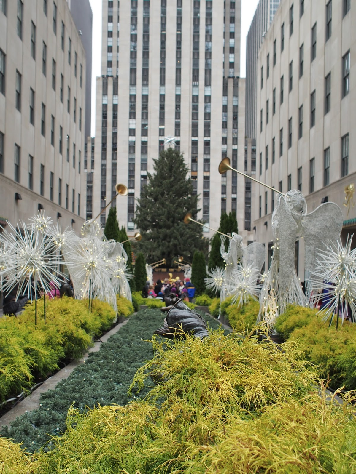 Tree Unadorned, #treeunadorned #rockcenter #rockefellercenter #christmastree 2014