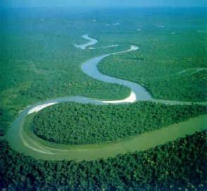 external image Amazon+Rainforest+by+view+world+beauty+%25282%2529.jpg