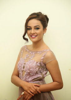 Actress Seerat Kapoor Pictures in Long Dress at Tiger Audio Launch 15.JPG