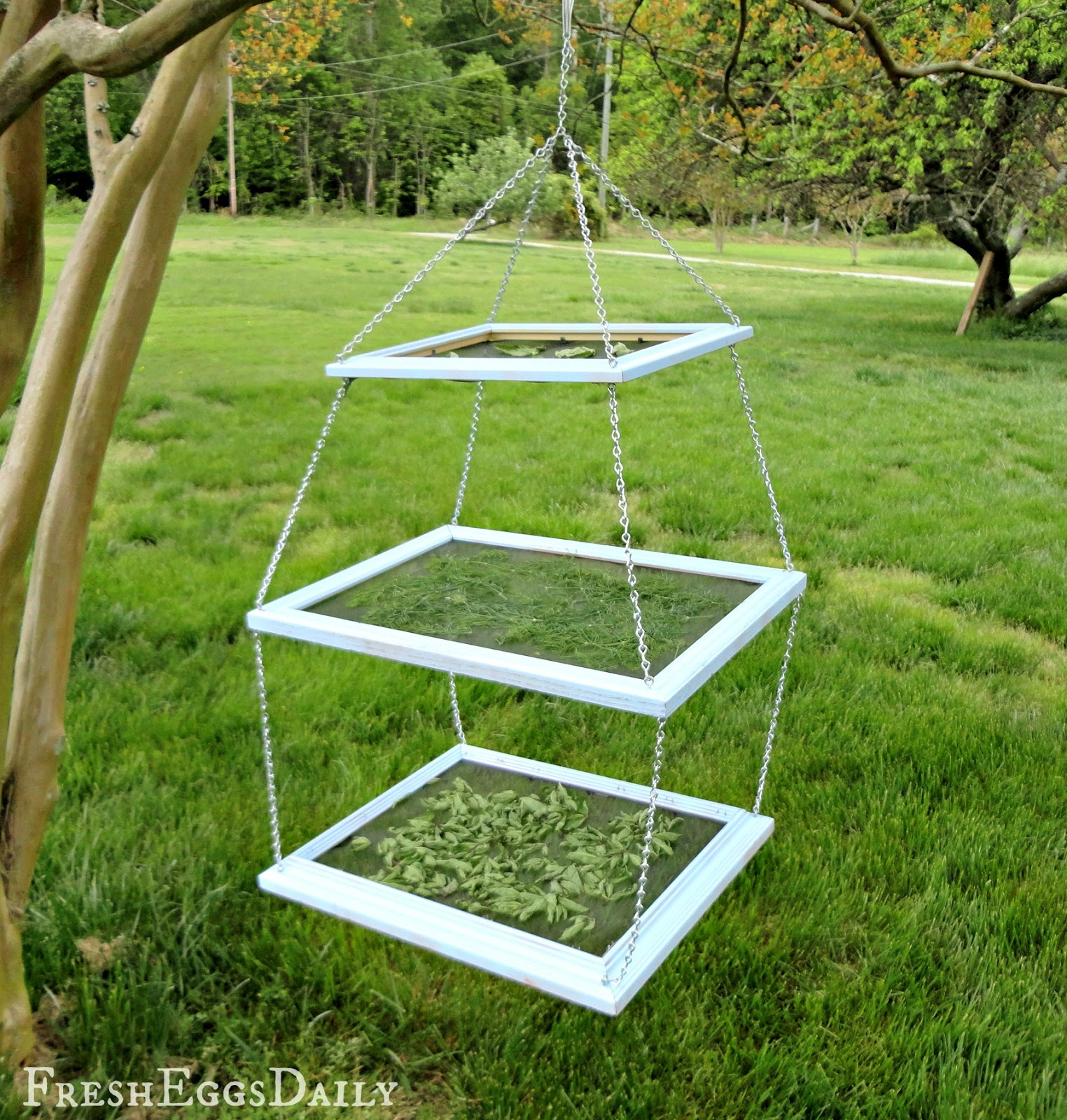 Drying Racks For Cabinet Frames ~ Diy tiered herb drying rack using repurposed picture