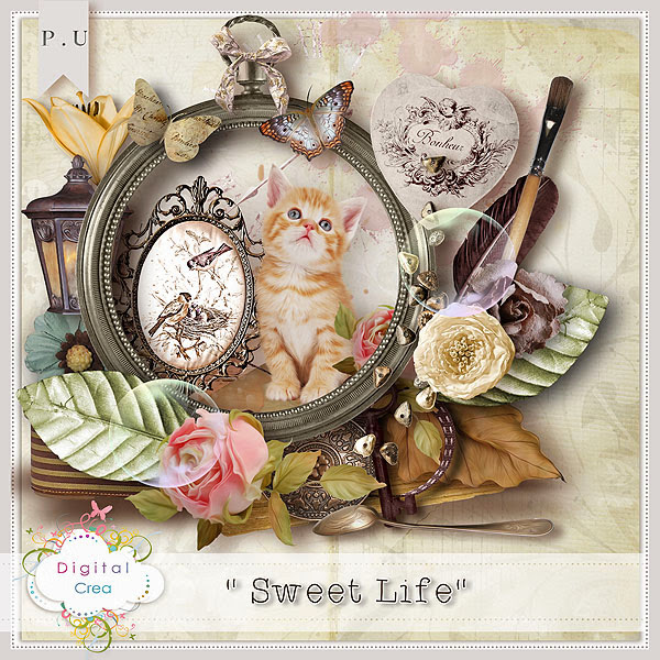 http://digital-crea.fr/shop/complete-kits-c-1/collab-sweet-life-part3-p-15056.html#.UpyiEuJLjEA