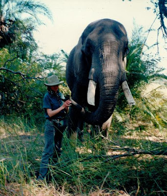 Sophie Neville with Abu the elephant in the Okavango Delta, Botswana