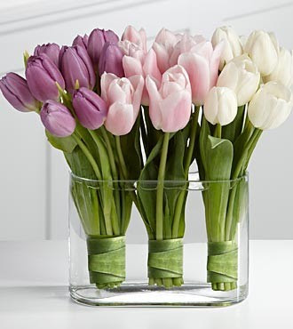A Remedy For Floppy Tulips