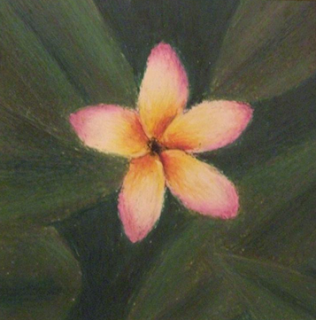 Little Flowers Drawing Simple