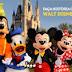 Promoção Nescau 2014 - Walt Disney World