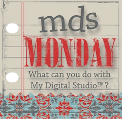 I'm a fan of....MDS Monday