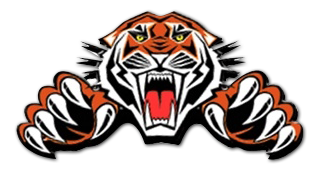 Go Tigers