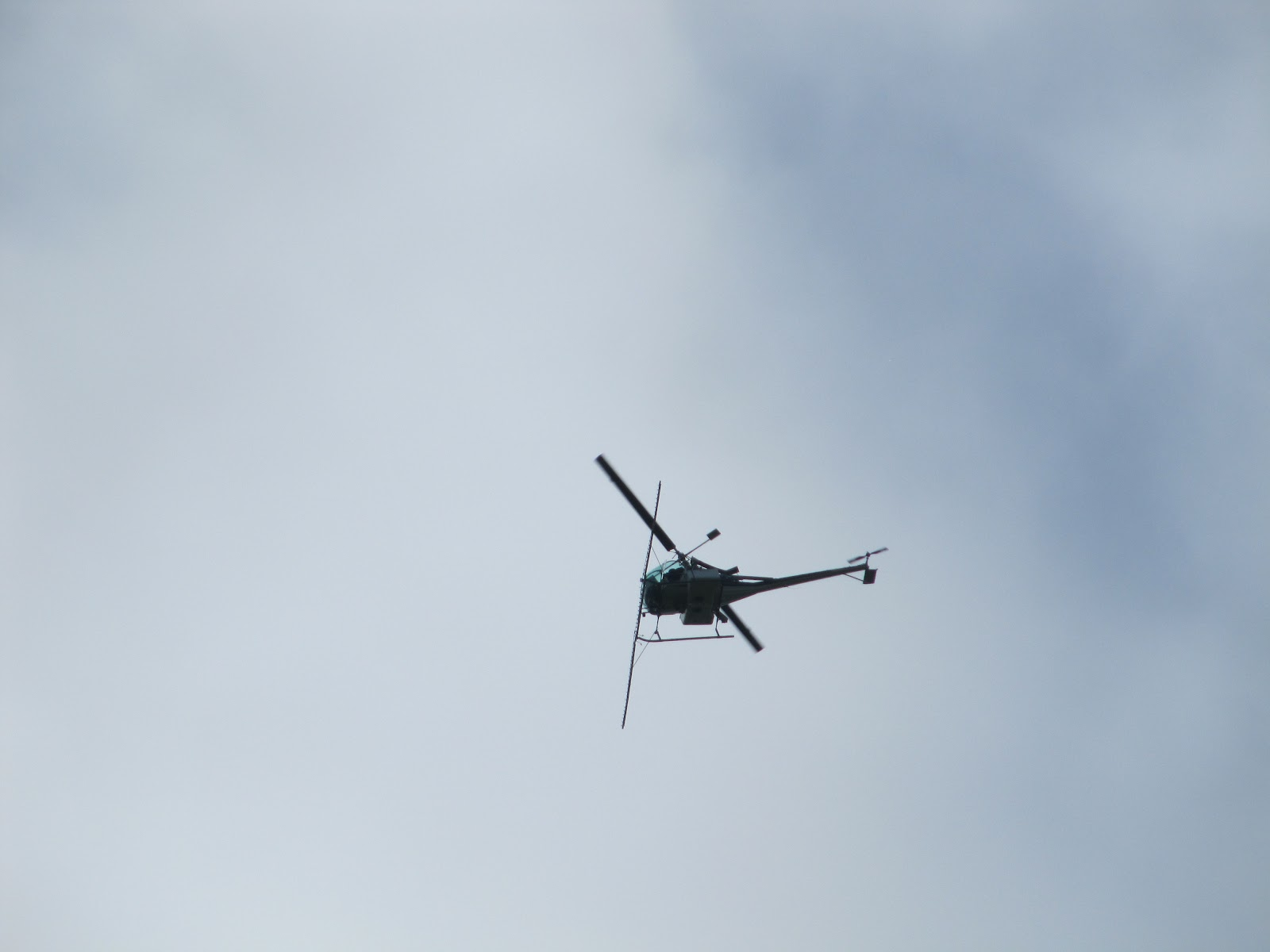 Helicopter Carrying a Horse of a Helicopter Carrying