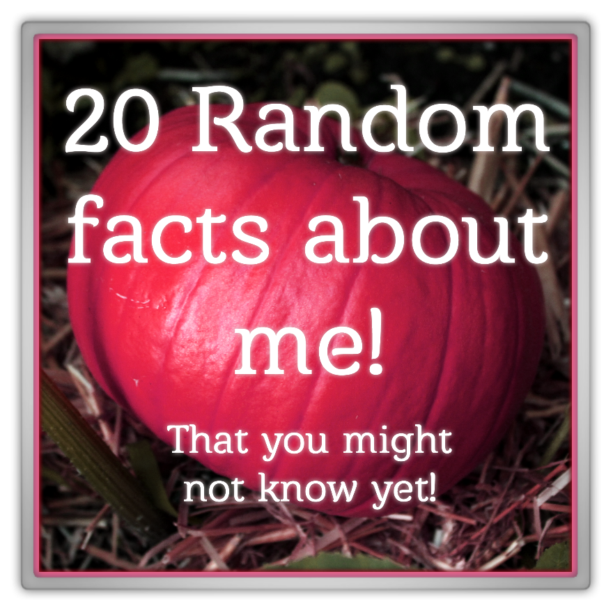 marjolein kucmer pink pumpkin 20 random facts about me that you might not know yet instagram tag summer autumn nature