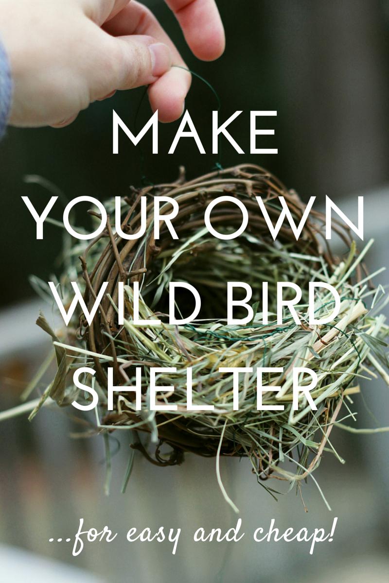 make your own wild bird shelter