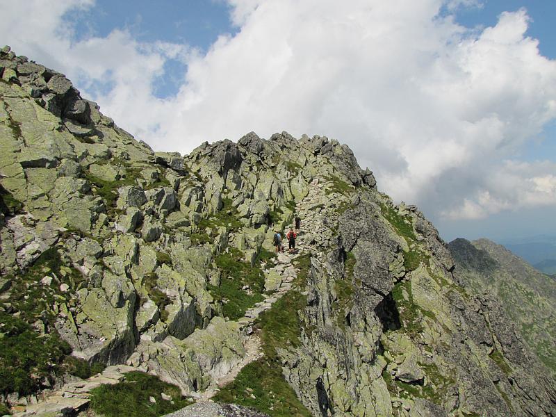 Szlak na Przełączkę nad Buczynową Dolinką.
