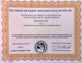 Certificate Rabbitry