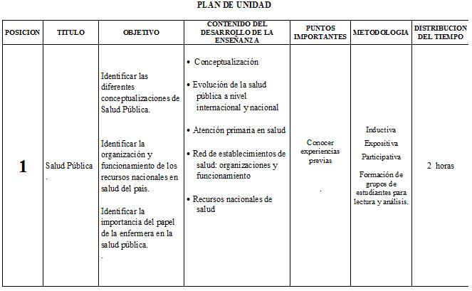 DOCENCIA EN ENFERMERIA: Plan Didáctico de Unidad (Teoría)