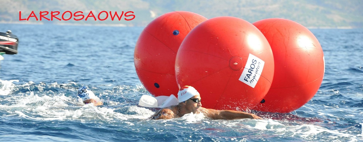 Jose Luis Larrosa Open Water Swimmer