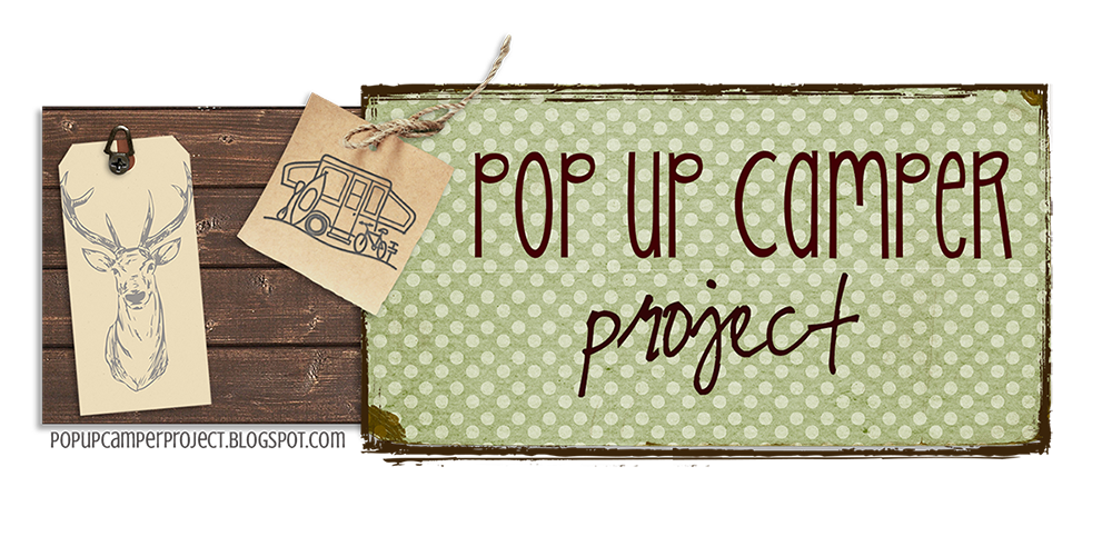 Pop Up Camper Project