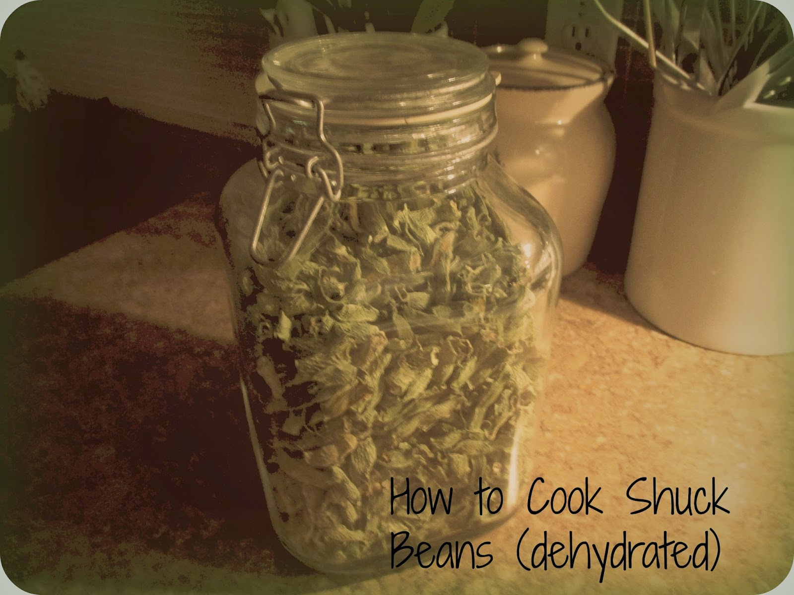 Vickie 39 S Kitchen And Garden How To Cook Dehydrated Green Beans Shuck Beans