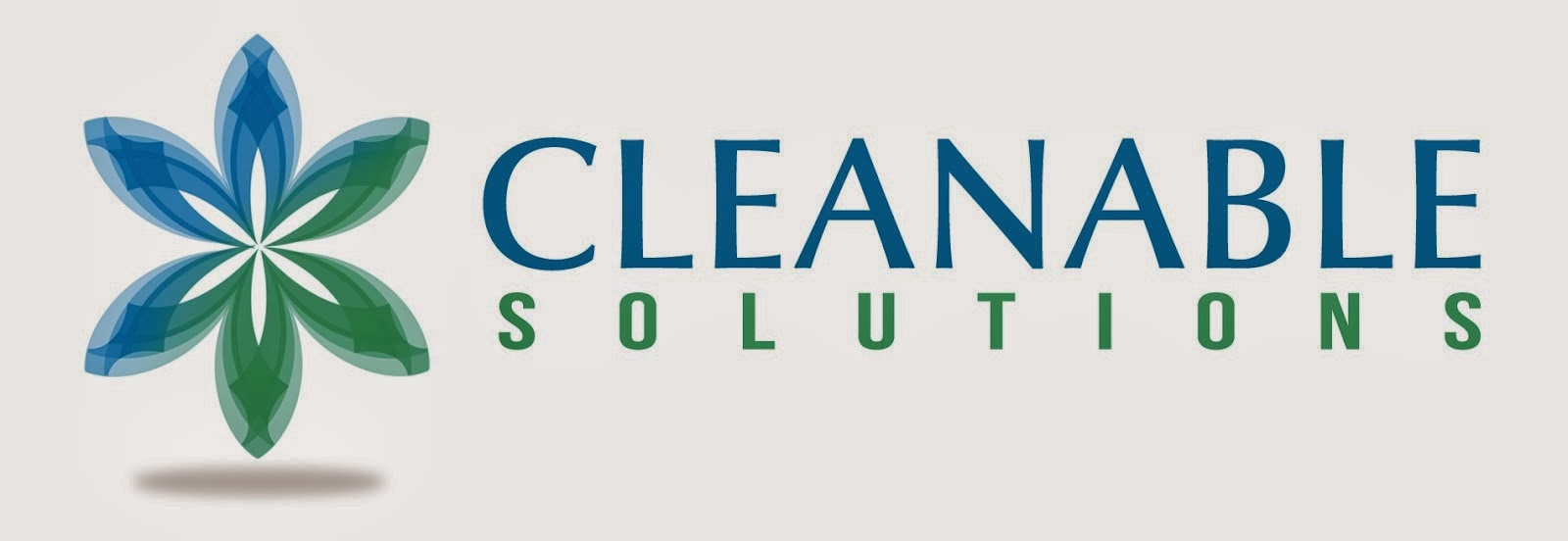 cleanable solutions duct cleaners