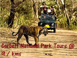 Corbett Tour Packages