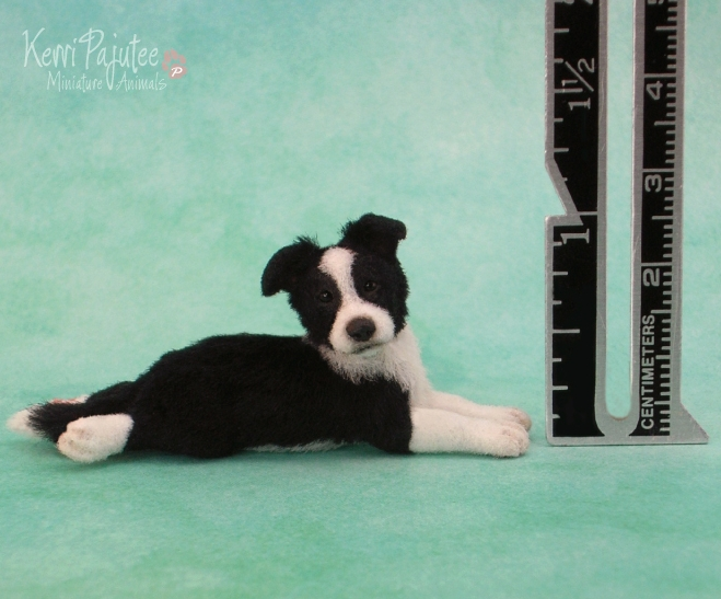 28-Border-Collie-Pup-Kerri-Pajutee-Miniature-Sculpture-that-look-Real-www-designstack-co