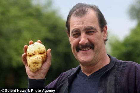 Ubi kentang seperti muka Lord Voldemort dalam filem Harry Potter