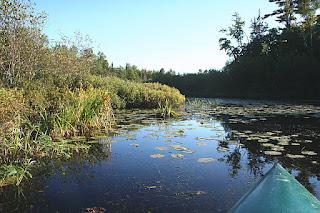 River Connecting Lakes Birch Lodge, Trout Lake, MI