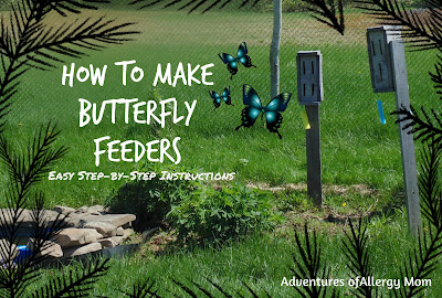 Butterfly Feeders Step-by-step instructions