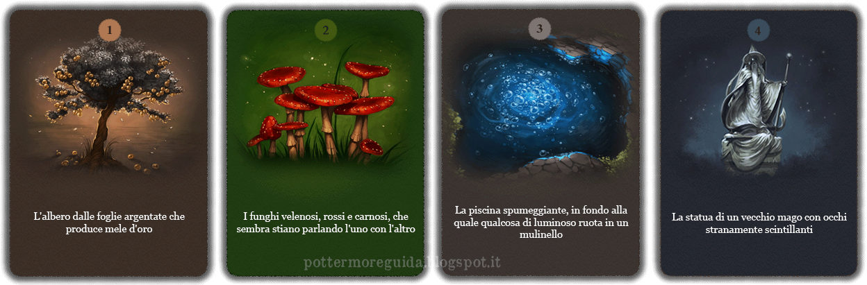 Domanda 16: Sei entrato in un giardino incantato. Qual è la prima cosa che sei curioso di esaminare?