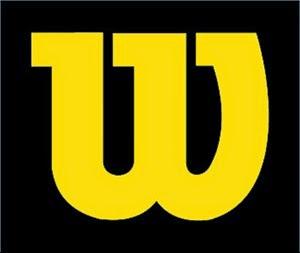 wilson-baseball--softball-equipment.jpg