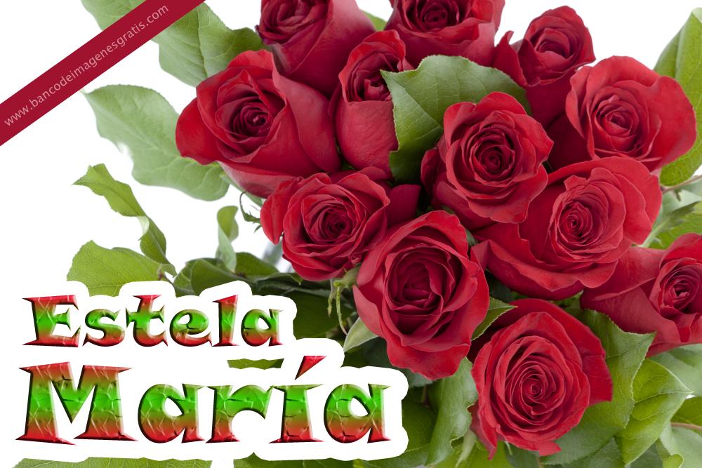 BANCO DE IMÁGENES: Rosas rojas con nombres de personas y mensajes ...