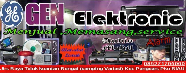 Gen  elektronic Dan service