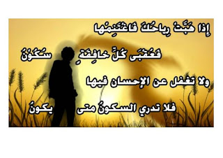 سيوفي العراقي - صفحة 6 %D8%B5%D9%88%D8%B1+%D8%A7%D8%B4%D8%B9%D8%A7%D8%B1+-12