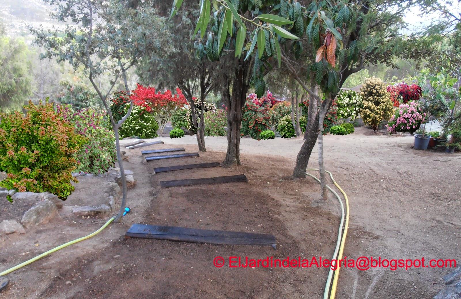 El jard n de la alegr a seto libre en una zona del for Preparacion de jardines