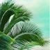 Tropical inspired - Inspiração Tropical