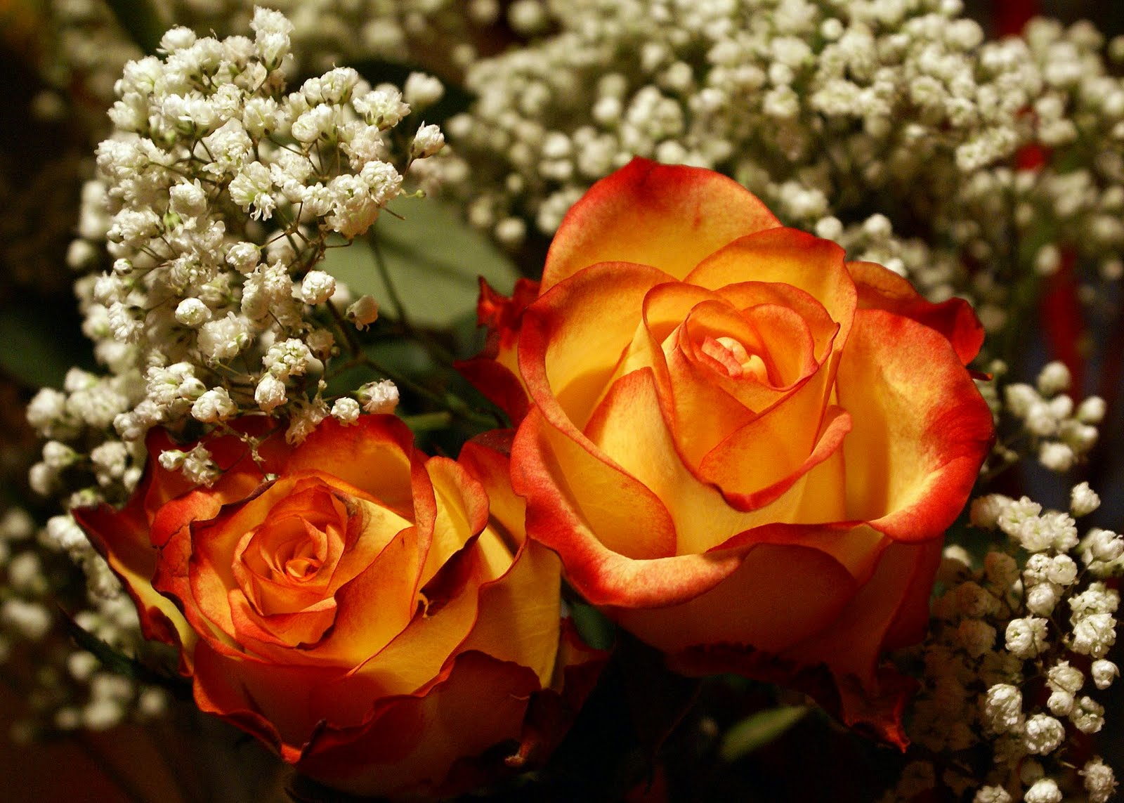 Wedding Flowers Red Yellow Roses For Desktop Background