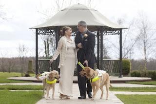 """Casal de cegos casou-se após seus cães-guias se apaixonarem. Dois cegos proprietários de cães-guias se casaram depois que seus cães os fizeram se conhecer e se apaixonar. Claire Johnson, de 50 anos, e Mark Gaffey, de 51, se casaram em Baralston, Stoke-on-Trent, na Inglaterra, depois de seus cachorros se apaixonarem um pelo outro há dois anos. Os cães-guias, Venice e Rodd, fizeram o casal se apaixonar quando caminhavam com seus donos.Os recém-casados se conheceram em 2012 em um curso de formação de cães-guias, que durou duas semanas.Foi evidente que Rodd e Veneza se apaixonaram, tocando e cheirando um ao outro durante todo o treinamento.A noiva disse: """"Eu não tenho nenhuma dúvida de que nossos cães-guias nos colocaram juntos e me ajudaram a encontrar meu verdadeiro amor.""""Quando o treinamento terminou, suas vidas mudaram para sempre. Descrição: Foto. Ao centro, sob o céu com névoa, os noivos, à esquerda, Claire e à direita, Mark. Eles seguram as guias de Venice, à direita de Claire e Rodd, à esquerda de Mark. Os noivos miram-se sorrindo, do mesmo modo Venice e Rodd trocam olhares. Claire é uma mulher de pele alva, usa uma discreta tiara sobre os cabelos castanhos bem claros presos em coque, casaco de malha leve sobre vestido bege de cetim longo e sapatos de salto baixo no mesmo tom. Mark é um homem de pele branca, alto, cabelos grisalhos e curtos, usa óculos de lentes grossas, terno preto sobre camisa cinza e gravata com listras diagonais em branco e grafite, na lapela, uma rosa amarela e no bolso do paletó, um lenço cinza. Venice é uma labradora com pelagem bege e é menor que Rodd, um labrador com pelagem café com leite, preso às guias, um pequeno e franzido véu enfeita os cães. Ao fundo, um coreto com estrutura em ferro coberto por telhado claro, ao redor, o gramado, arbustos e árvores nuas sobrepostas ao céu com névoa complementam o cenário."""