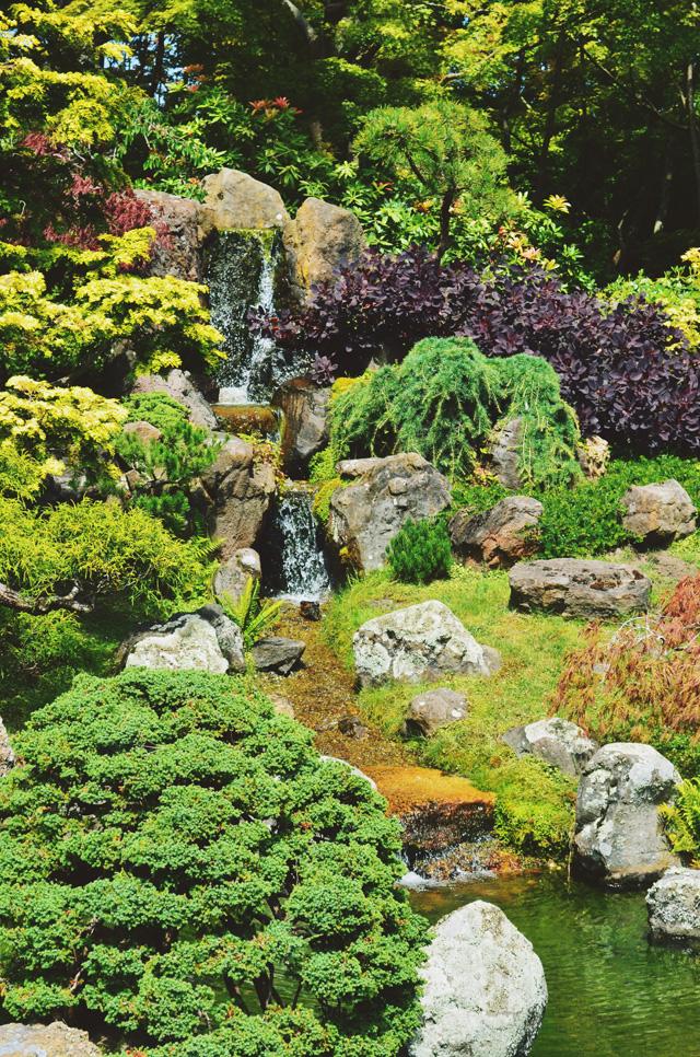 Wtfab san francisco 39 s japanese tea garden - Japanese tea garden san francisco ...