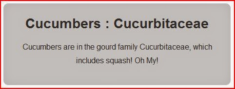 Cucumbers : Cucurbitaceae gray box