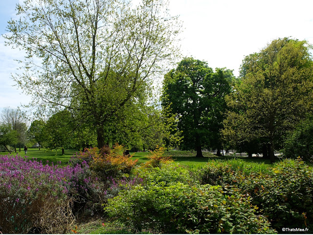 Londres Hyde Park arbres et fleurs printemps côté Queensway