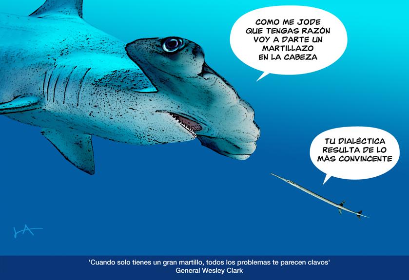 Pez Martillo Pescado Del Dia